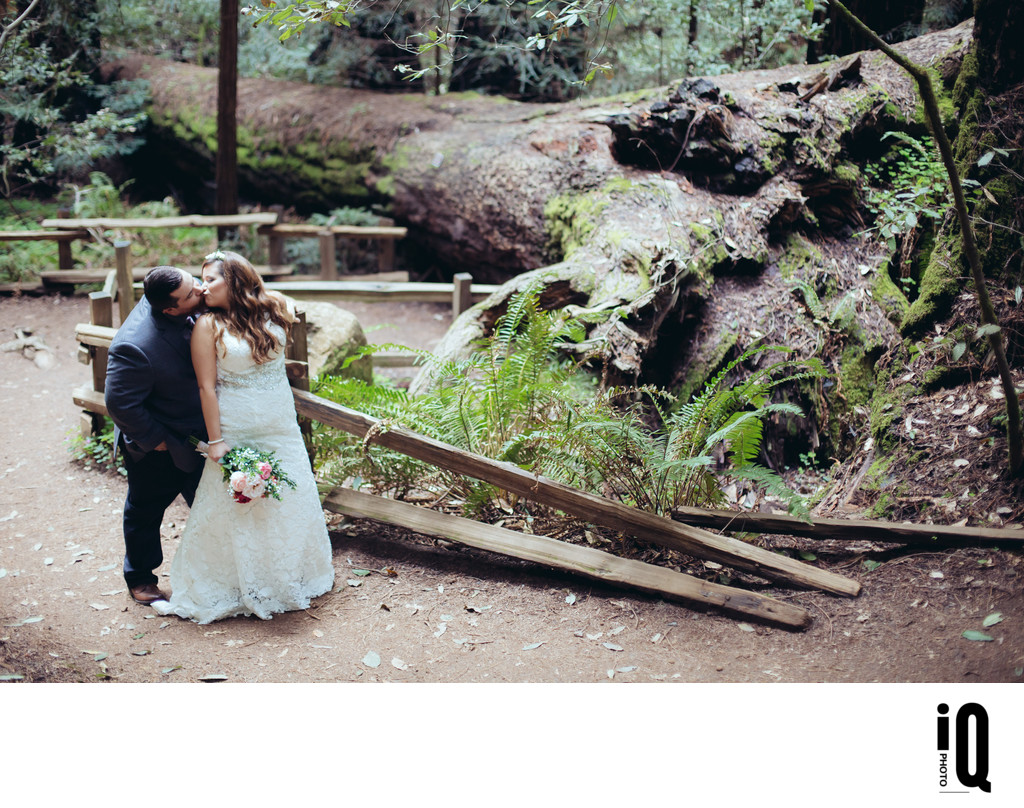 Wedding Kiss in Muir Woods