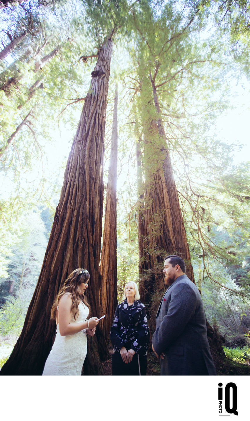 Muir Woods Wedding Vows