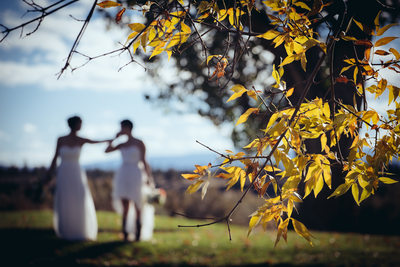 Silhouette Photo of Two Brides