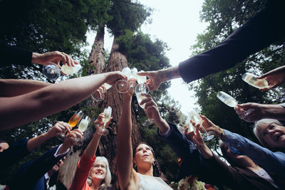 Wedding Toast at Muir Woods
