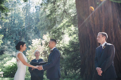 Sun shining at Muir Woods Ceremony