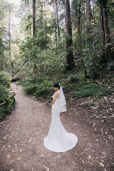 Muir Woods Bride