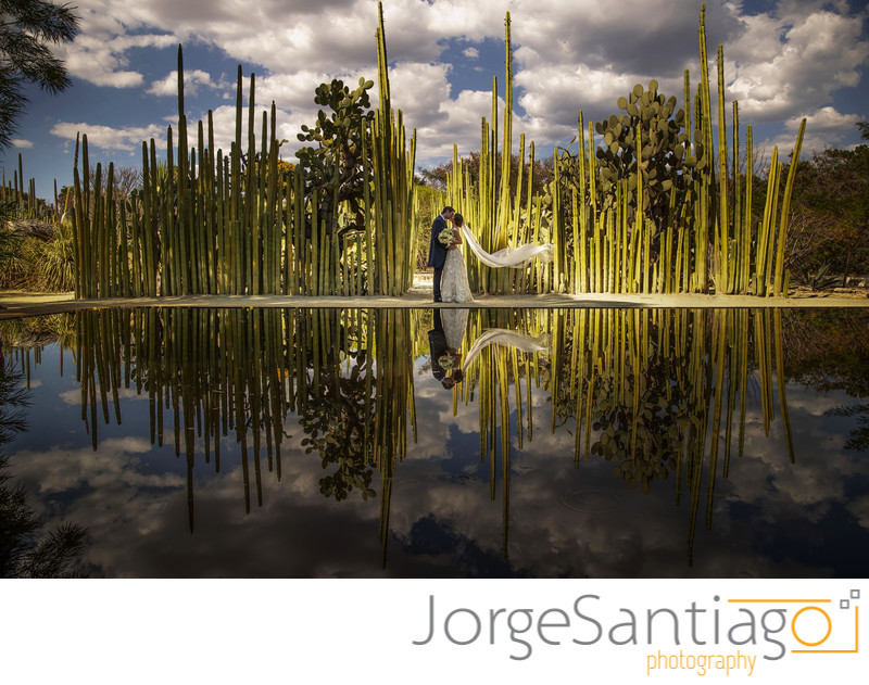 Mexico Destination Wedding -Alondra and Fernando
