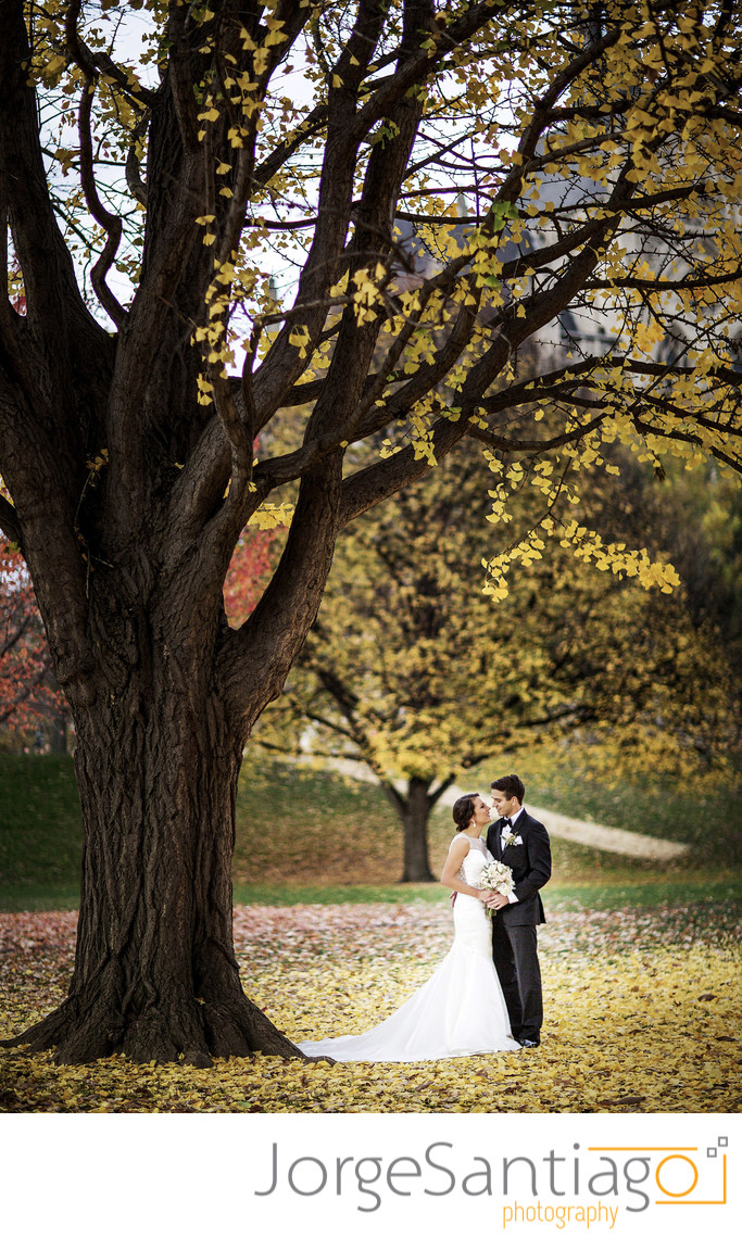Fall Wedding Photos Pittsburgh
