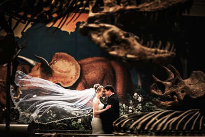 Carnegie Museum Natural History Wedding Photos.